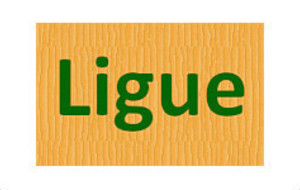 Finale de Ligue Interclub D2